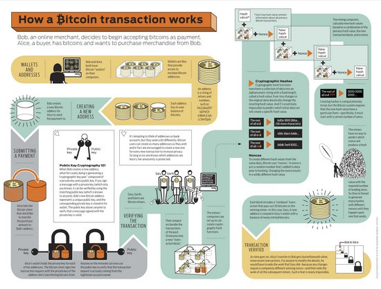 bitcoin-infographic 5029189c9cbaf